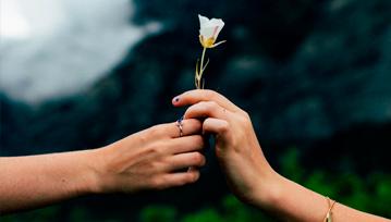 Frases motivacionales: El peso del perdon